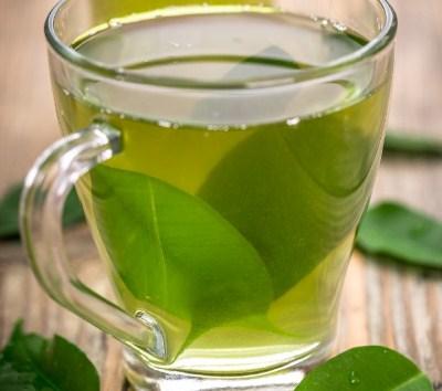 Perbedaan Matcha Dan Grean Tea