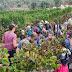 Produção vinícola deste ano em Israel supera as expectativas, confirmando uma antiga profecia bíblica!