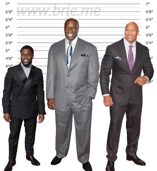 Michael Clarke Duncan height comparison with Kevin Hart and The Rock