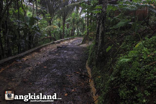 jalan ke curug nangga