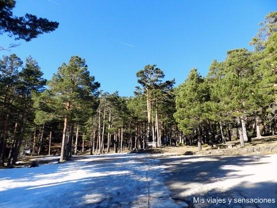 Parque Natural de la Laguna Negra, Soria