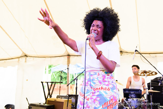 &More at Hillside Festival on Saturday, July 13, 2019 Photo by John Ordean at One In Ten Words oneintenwords.com toronto indie alternative live music blog concert photography pictures photos nikon d750 camera yyz photographer