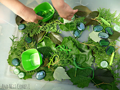 Green themed sensory bin from And Next Comes L