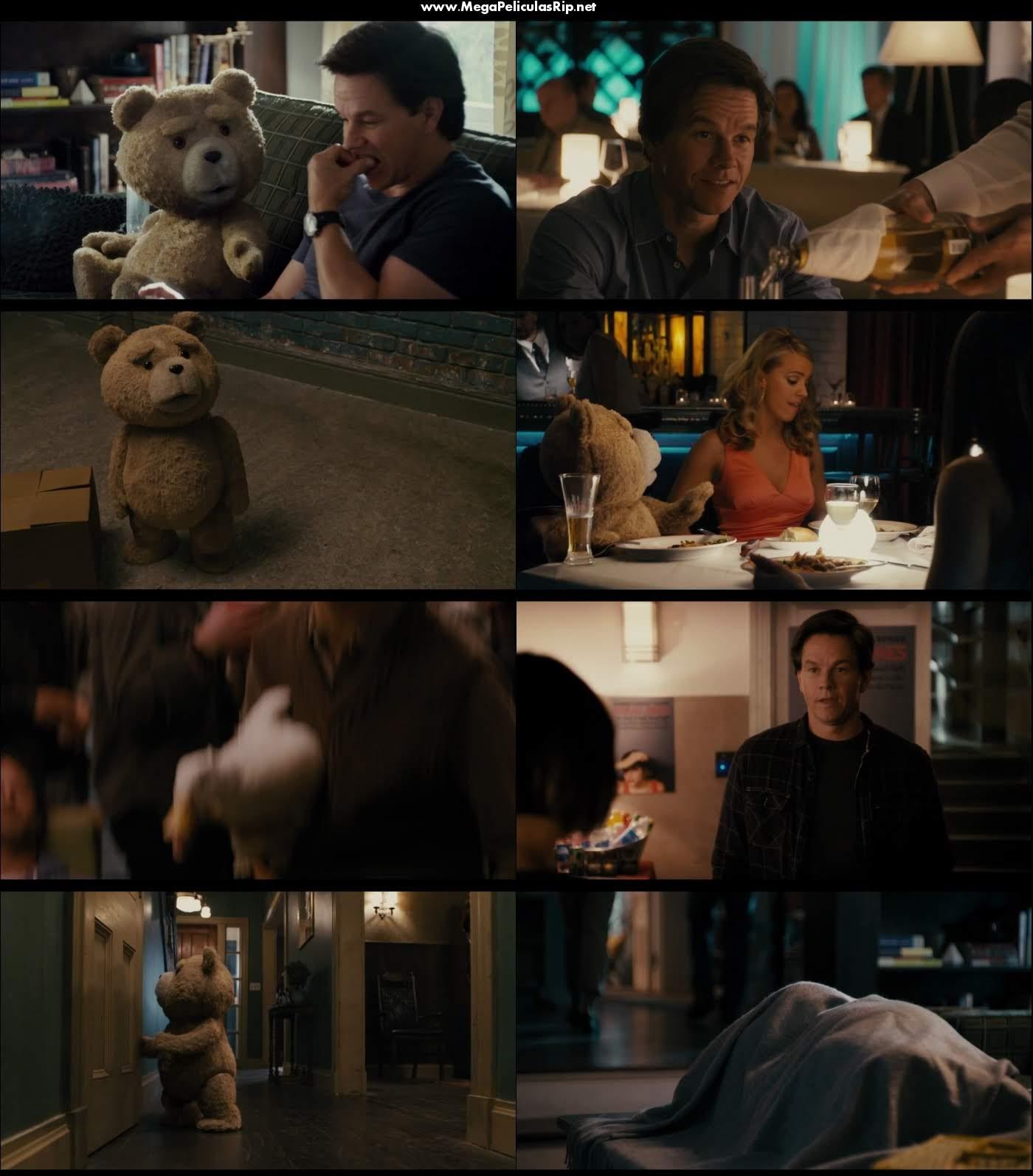 Ted 1080p Latino