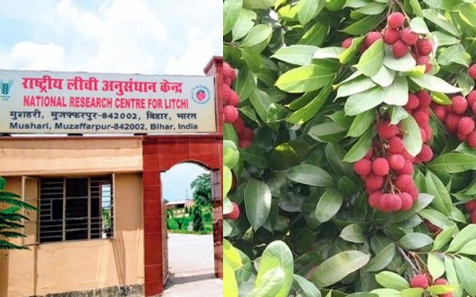 मुजफ्फरपुर मे लीची किसान कें देल जाएत 'बाग प्रबंधन' ट्रेनिंग