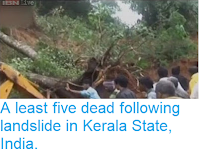 http://sciencythoughts.blogspot.com/2013/08/a-least-five-dead-following-landslide.html