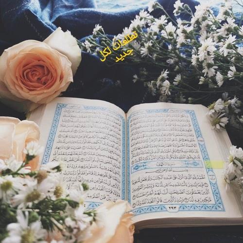 اللغة العربية في القرآن الكريم