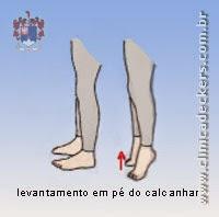 Distensão da Musculatura da Panturrilha - Levantamento em pé do calcanhar