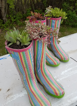Turn colorful rain boots into garden planters!