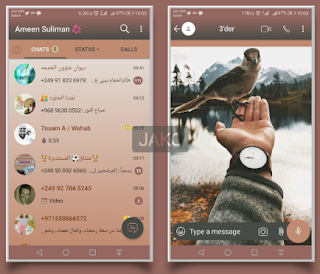 Hand & bird Theme For YOWhatsApp & Fouad WhatsApp By Jako