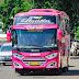 Bus Almira Rute Belitang Jakarta