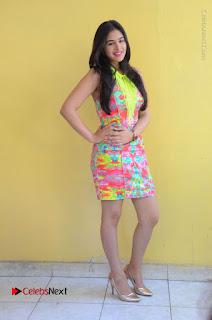 Telugu Actress Prasanna Stills in Short Dress at Inkenti Nuvve Cheppu Press Meet Stills  0181.JPG