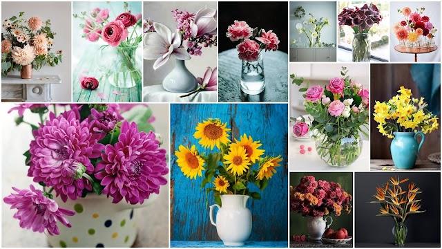 18 Από τα ομορφότερα Λουλούδια για Βάζα και συμβουλές για την φροντίδα τους