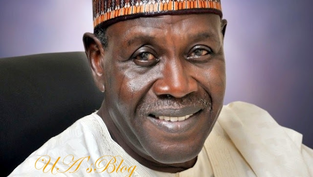 2019: What I'll do to Babagana Kingibe if I become president – Lamido