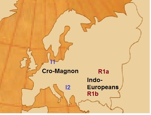 International DNA