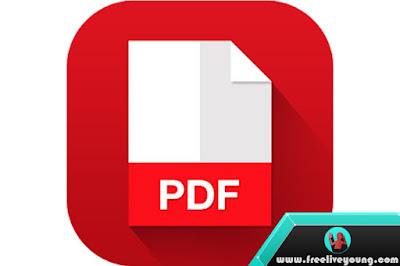 Perform PDF File Compression and Reduce the Size