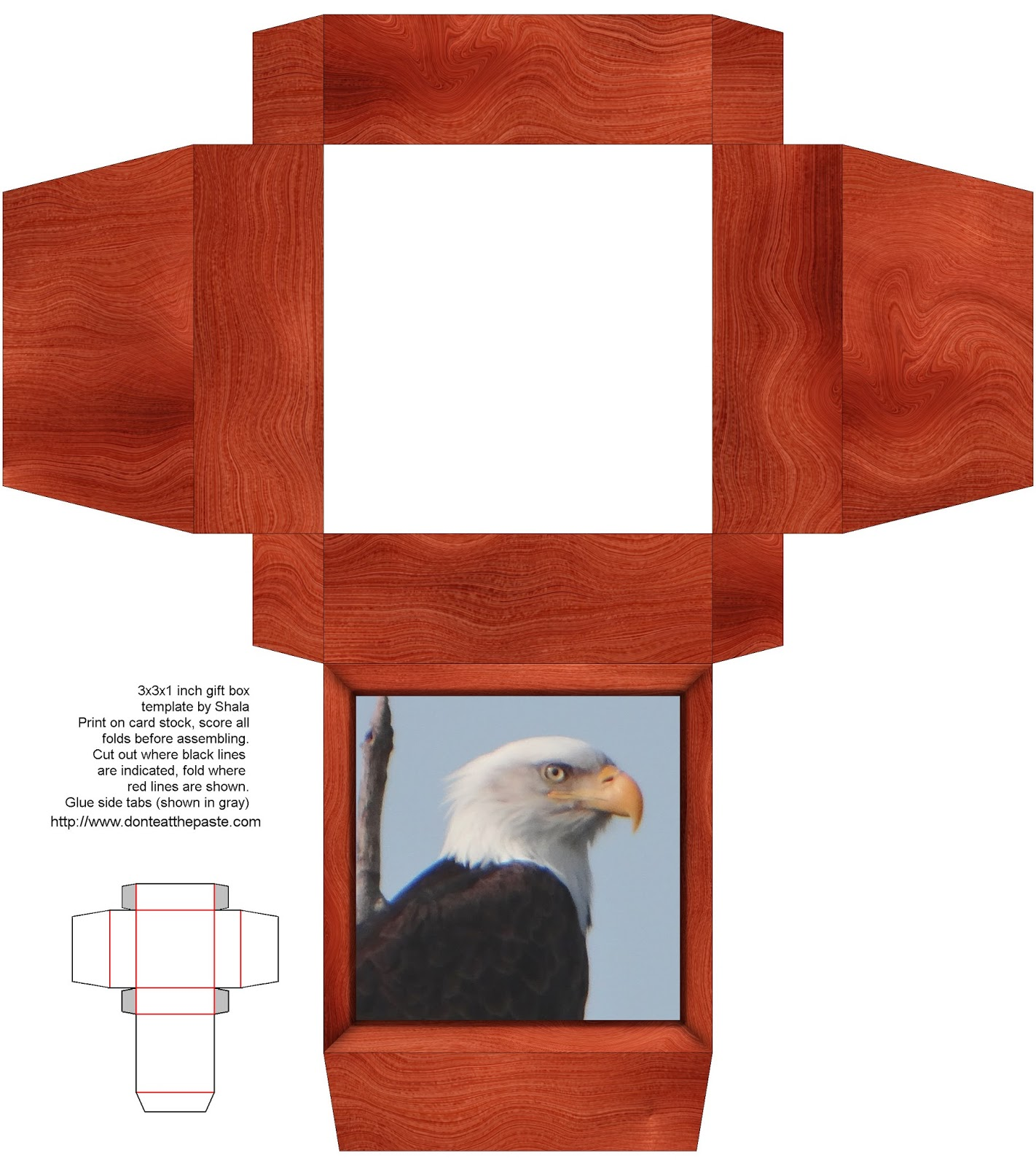 Printable bald eagle box