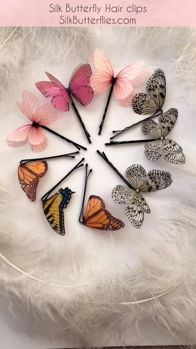Butterfly, Beautiful butterfly images, poster