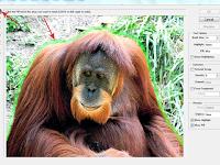 Menghapus Background Foto Dengan Extract