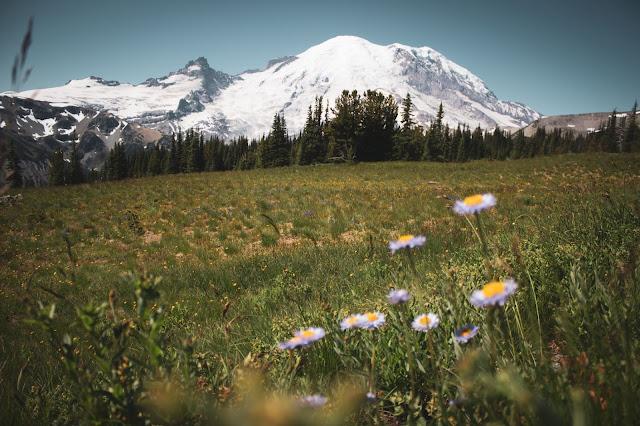 Rainier Photo by Ryan Stone on Unsplash