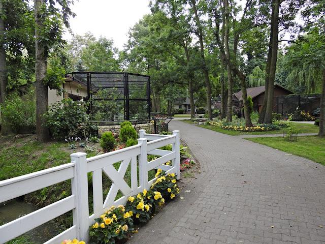 nowotomyskie zoo jest ładne, czyste i zadbane