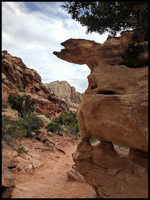 This rock I found fascinating. Look at the overhang on top, and the 2 arches down lower,