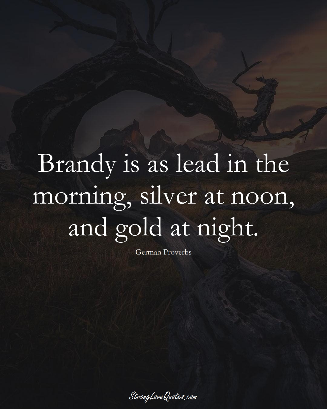 Brandy is as lead in the morning, silver at noon, and gold at night. (German Sayings);  #EuropeanSayings