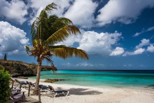 strand med palmetrær Las Palmas