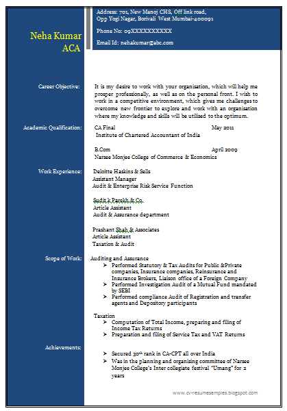 it professional resume sample free download