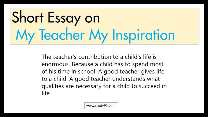 Short Essay on My Teacher My Inspiration - Study95
