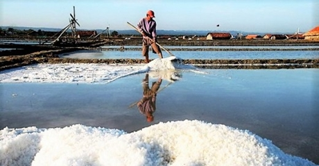 Harga Garam di Aceh Rp 7.000/Kg, Petani: Kami Senang