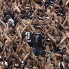 www.seuguara.com.br/torcida/Corinthians/Brasileirão 2020/
