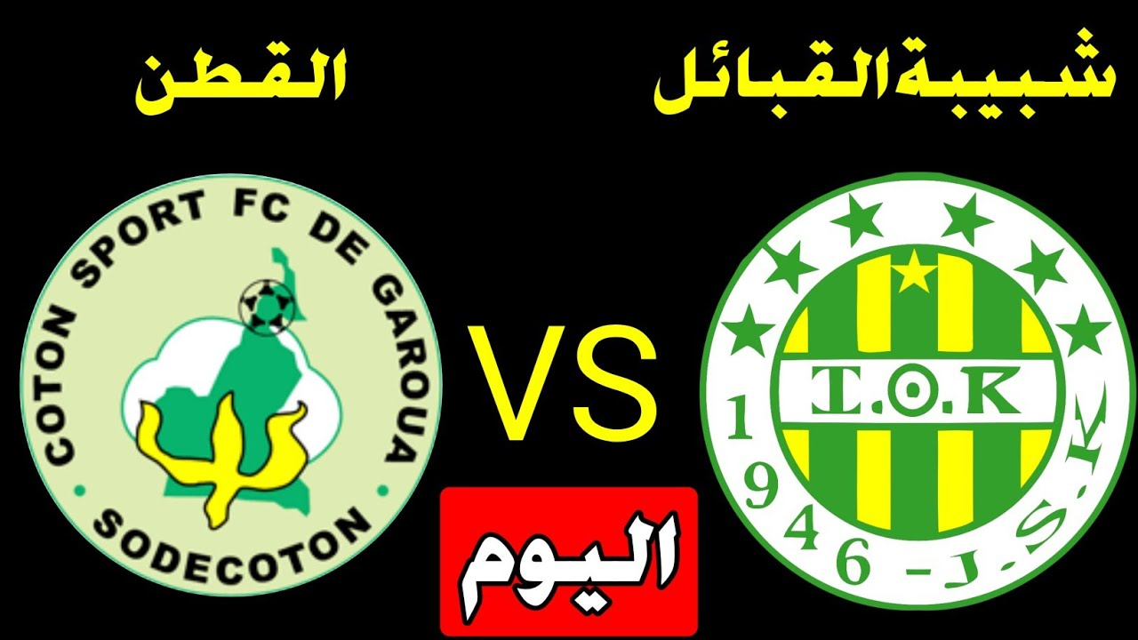 مشاهدة مباراة شبية القبائل والقطن الكاميروني اليوم