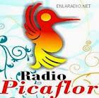 Radio Picaflor Perú