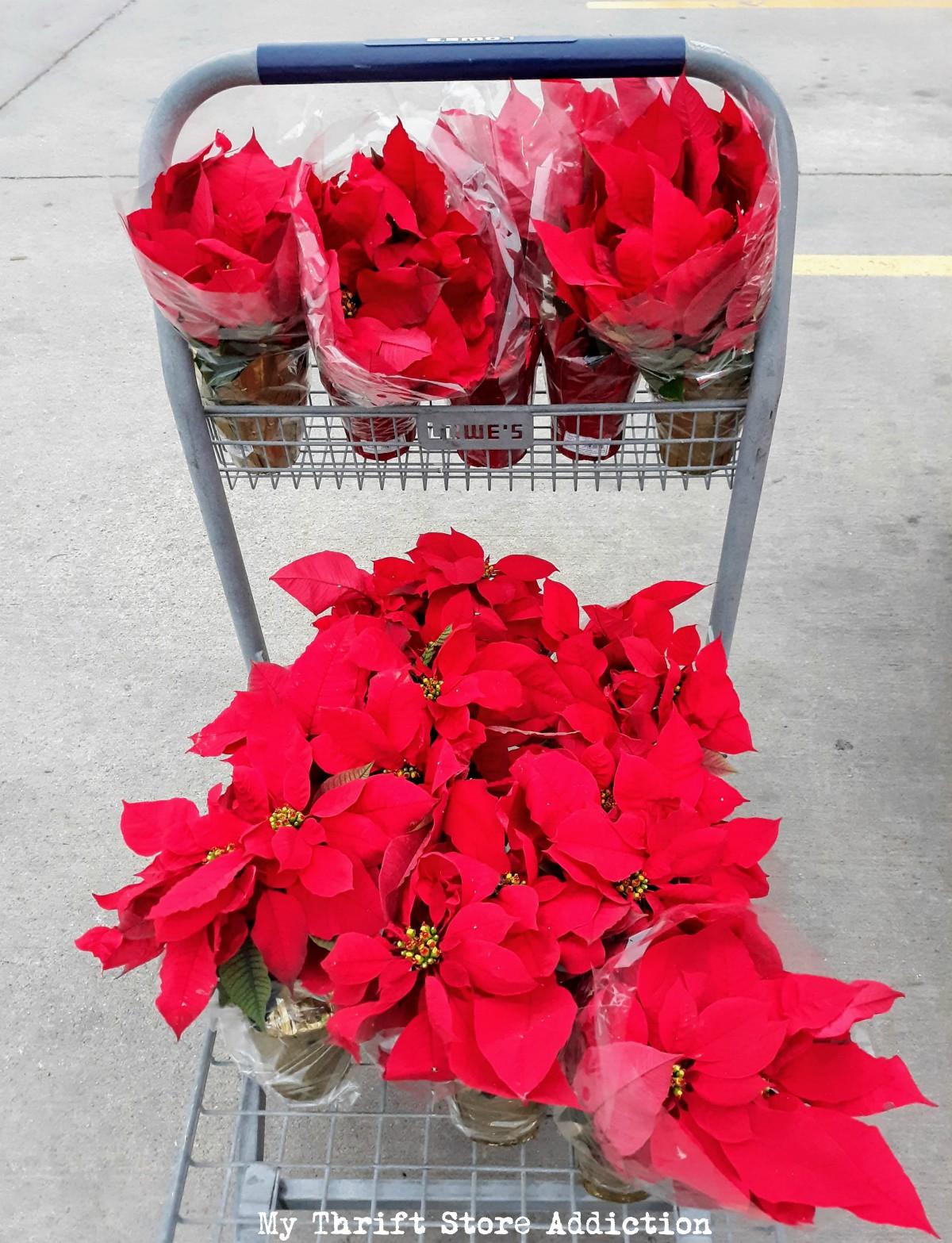 seasonal and holiday bargains
