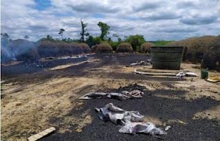 Operação do Inema identifica e combate atividade ilegal no Sudoeste da Bahia