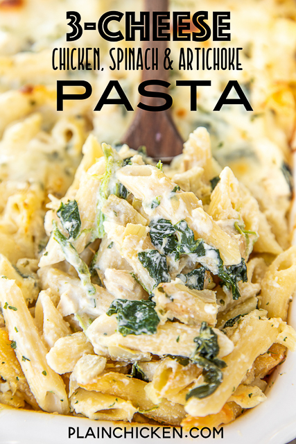spoonful of chicken pasta