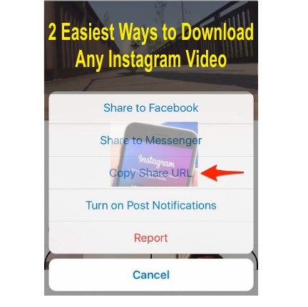 2 easiest ways to download any instagram video be informed and earn i have written a tutorial article for iphone users on how to download instagram videos and stories using instagram and now we will attempt to do the ccuart Choice Image