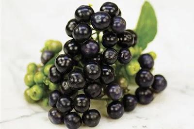 Huckleberry - Huckleberry in Hindi