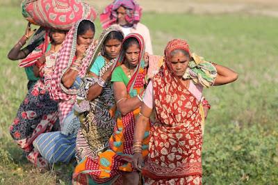 about odisha, Festival of Odisha Rath
