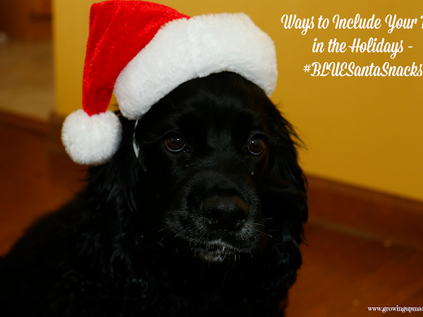 Ways to Include Your Pets in the Holidays - #BLUESantaSnacks