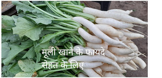 Mooli Ke Fayde -  मूली खाने के फायदे सेहत के लिए
