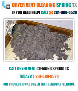 http://www.dryerventcleaningspring.com/cleaning-services/dryer-lint-removal.jpg