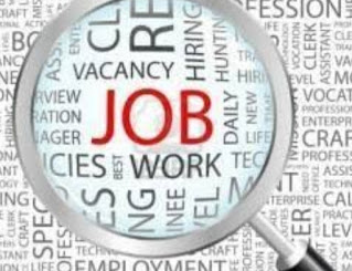 Graduate Freshers And Experience Candidates Job Vacancy in Jindals Consortium