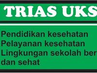 Download Contoh Program Kerja UKS Siap Pakai
