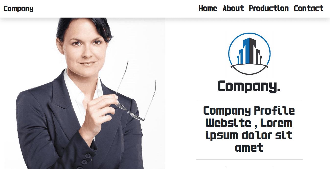 pembuatan website company profile perusahaan profesional plus aplikasi invoice dan akuntansi online