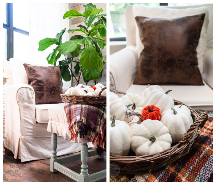 white armchair, leather pillow, plaid throw, fiddle leaf fig trees and basket with white pumpkins