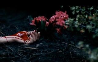 Resultado de imagen para flores cortadas de karin slaughter