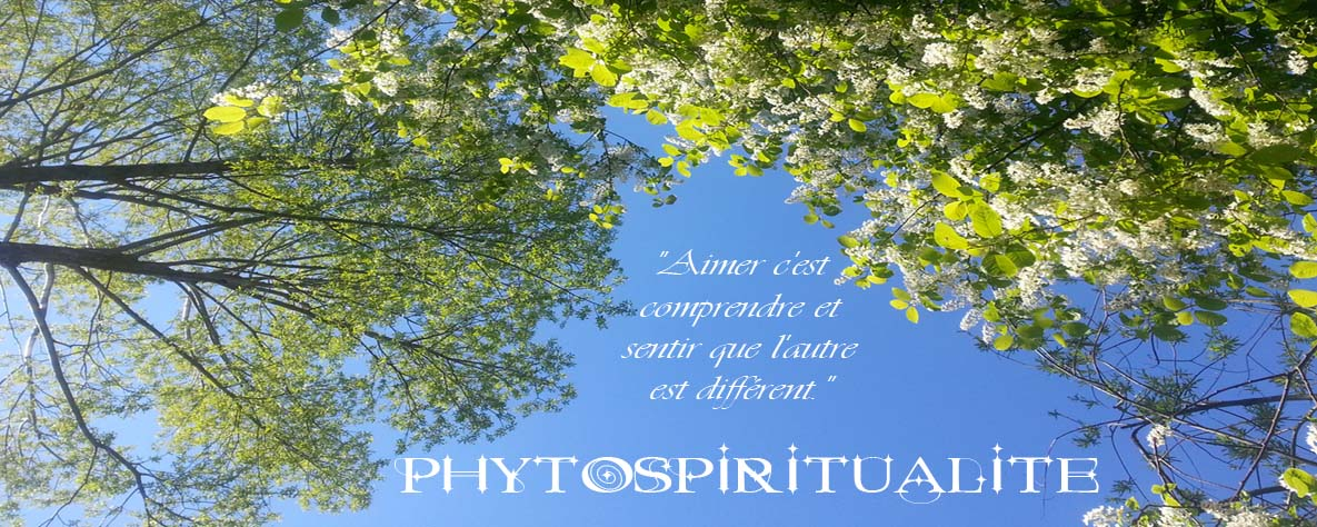 Phytospiritualité Les Citations