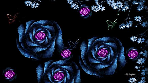 wallpaper mawar hitam